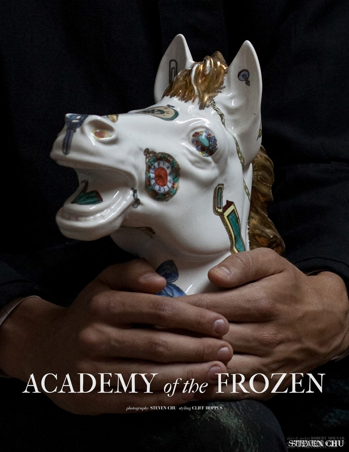 Academy of the Frozen